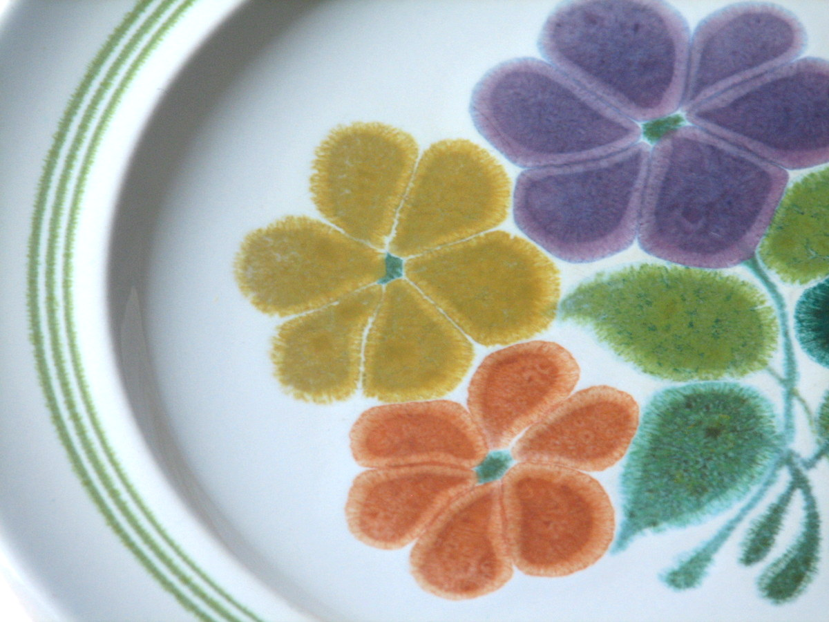 Franciscan china Floral pattern