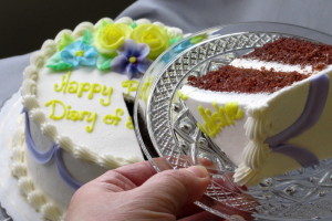 Diary of a Dishie birthday glassware